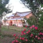 Casa Oloianu - Calarasi