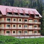 Hotel Larisa - Azuga